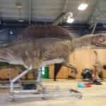 Sécurité Exposition de l'ère des dinosaures à l'ère de glace 1